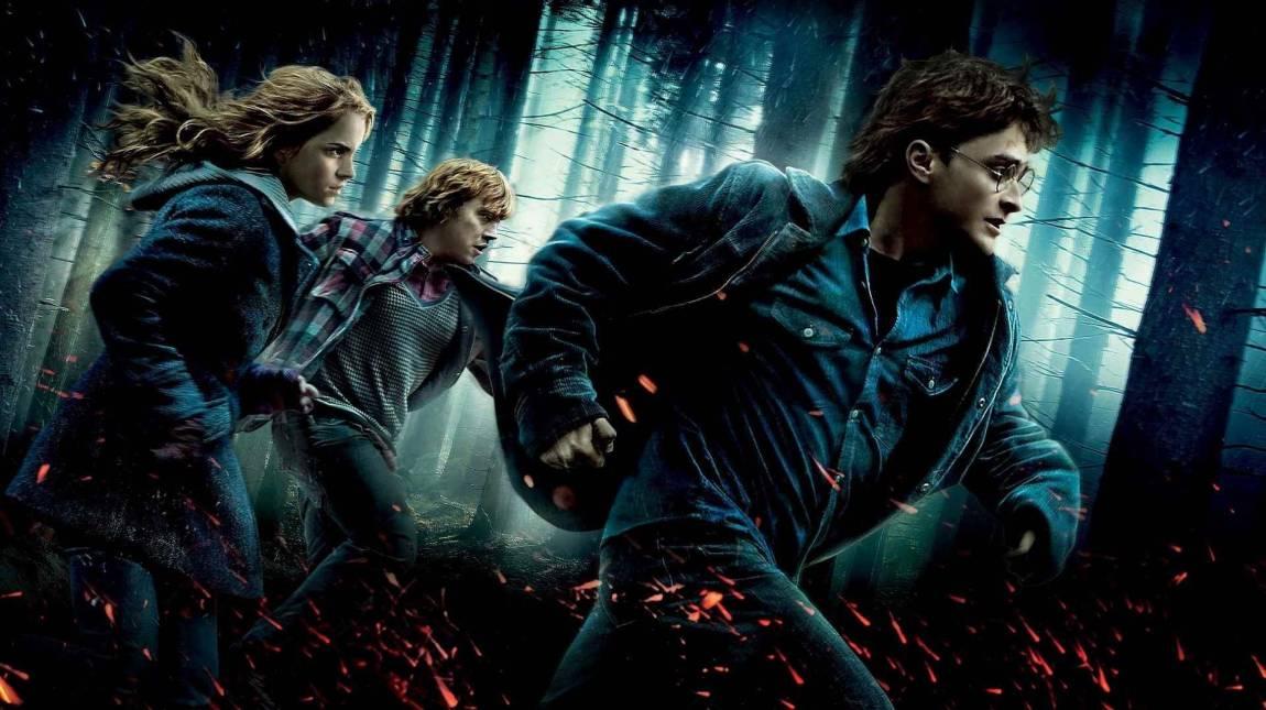 A nagy mágus maraton: Harry Potter és a Halál Ereklyéi: I. Rész – Kritika kép