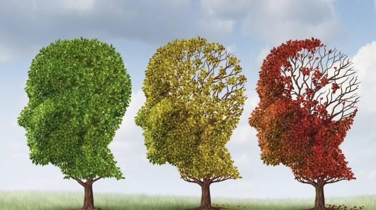 Játékok segítségével hamarabb felfedezhető az időskori demencia bevezetőkép