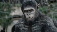 Matt Reeves szerint A majmok bolygója: Háború egy bosszú westernre hajaz majd kép