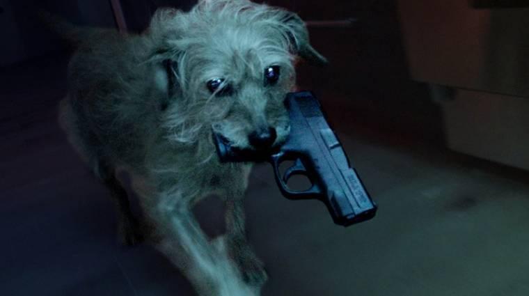 Dog Wick - ilyen, ha John Wick kutyája száll akcióba kép