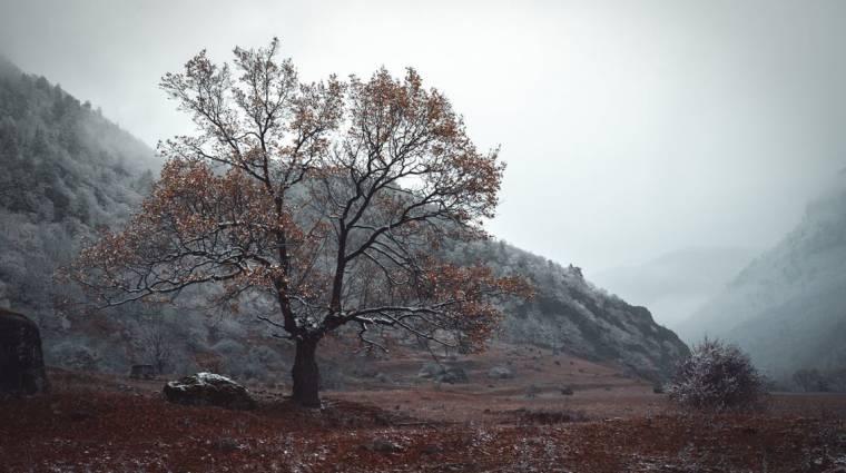 Mit tehetsz a téli levertség és depresszió ellen? bevezetőkép