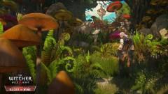 The Witcher 3: Blood and Wine - újabb részleteket tudtunk meg a kiegészítőről kép
