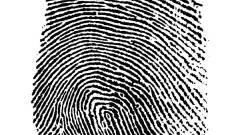 Népszerű az ujjlenyomattal történő azonosítás kép