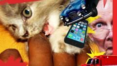 15 eset, amikor a telefon gazdája ellen támadt kép