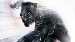 Megvan, hogy kik lesznek a Black Panther fontos karakterei kép