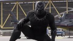 A Fekete Párduc komolyabb Marvel-mozi lesz az eddigieknél kép