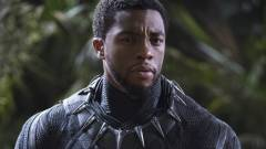 Comic-Con 2017 - állva tapsolták meg a Fekete Párduc legújabb képsorait kép