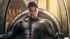 Imádják a kritikusok a Fekete Párducot kép