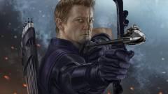 Jeremy Renner a Hangya miatt hagyja ki a Mission: Impossible 6-ot? kép