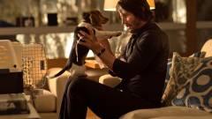 Új gonosz és új kutya a John Wick 2-ben kép