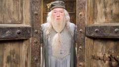 Nyíltan meleg lesz Dumbledore a Legendás állatok és megfigyelésük folytatásaiban? kép