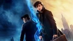 Már meg is valósult a Harry Potter-Legendás állatok crossover? kép