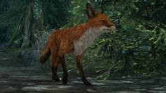 A The Elder Scrolls V: Skyrim kincskereső rókái a véletlen szüleményei kép