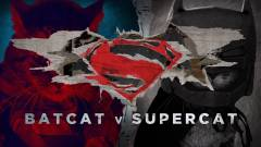 Batmacs Supermacs ellen, avagy traileren a cicaság hajnala kép