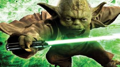 Minden, amit Yoda fajáról tudni lehet