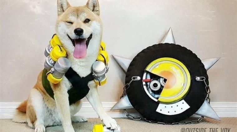 Úgy tűnik, egy kutya is lehet cosplayer bevezetőkép