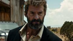 A Fox vezérigazgatója szerint lehetséges egy Farkas reboot kép