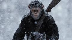 Így bújt bele Cézár bőrébe Andy Serkis kép