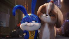 A kis kedvencek titkos élete 2 - az új trailer a sztoriról mesél kép