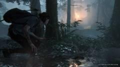 The Last of Us Part II - ilyen kiadásokban szerezhetjük majd be kép