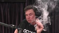 Vezető közgazdász vádolja bitcoinpiaci manipulációval Elon Muskot kép