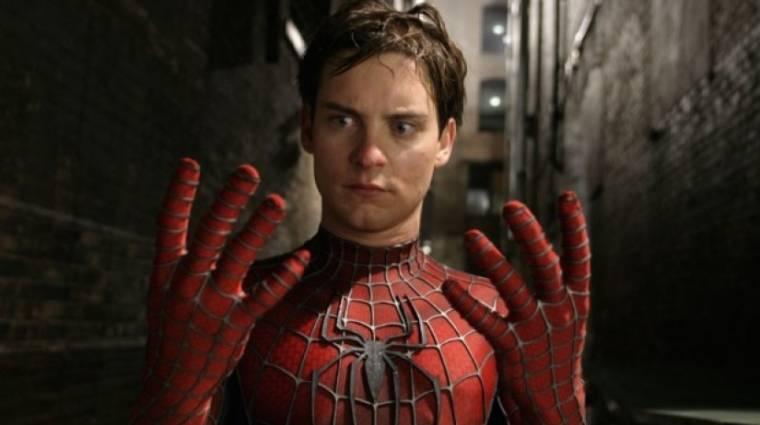Napi büntetés: három fiú mérges pók csípésével akart Pókemberré válni bevezetőkép
