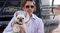Robert Downey Jr. lesz Dr. Dolittle kép