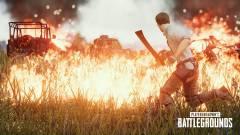 DDoS támadások miatt botladozik a PlayerUnknown's Battlegrounds kép