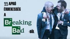 11 apró érdekesség a Breaking Badből kép