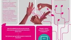 Informatikusképzés indul a T-Systemsnél kép