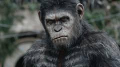A majmok bolygója: Háború - Kritika kép