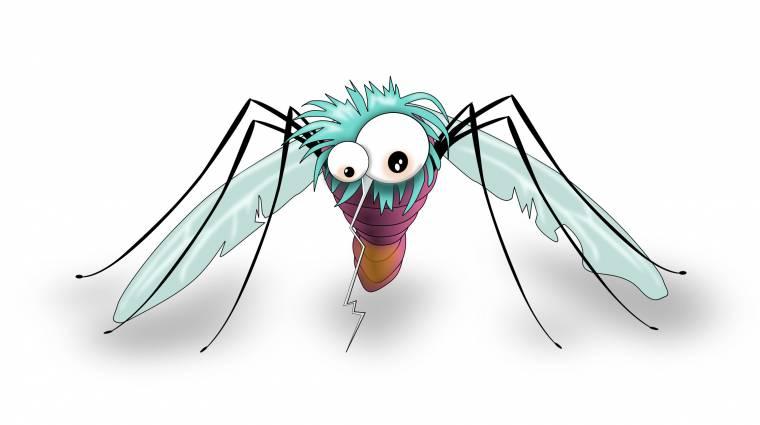 Így ne etessük meg magunkat a szúnyogokkal kép