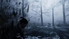 The Game Awards 2017 - mozgásban a Fade to Silence című túlélőjáték kép