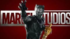 Szavazz: szerinted érdemel Oscar-díjat a Fekete Párduc? kép