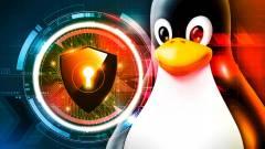A Linux sebezhetőbb, mint a Windows 10? kép
