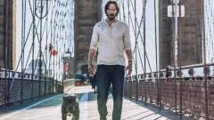 Így reagálnak a kutyák a John Wick 3 trailerére kép