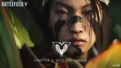 Dzsungelharcot hoz a Battlefield V következő fejezete kép