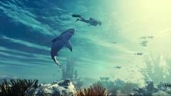 E3 2019 - új traileren a cápás RPG, a Maneater kép
