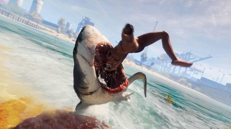Ilyen lesz majd cápaként embereket zabálni bevezetőkép