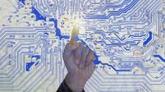 EY: a vállalatok nagy része nem fordít elég figyelmet a kibervédelemre kép