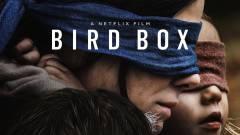 Több mint 45 millión nézték már meg a Bird Boxot kép