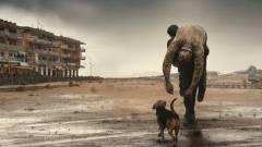 Dogman - Kutyák királya - Kritika kép