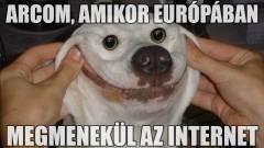 Győzelem: nem lesz európai internet-káosz és a mémek is megmaradnak! kép