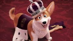 A királynő kutyája - Kritika kép