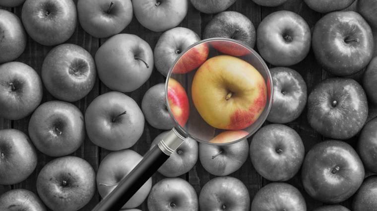 Tudni akarod, mit fejleszt az Apple? Nézd meg, kiket vesznek fel! kép