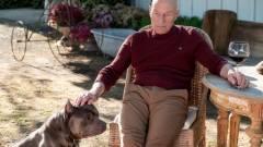 Nézettségi rekordot döntött a Star Trek: Picard kép