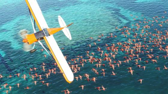 Microsoft Flight Simulator infódoboz