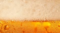 Új kihívás: augusztus 19-én mindenki menjen munka helyett sörözni! kép