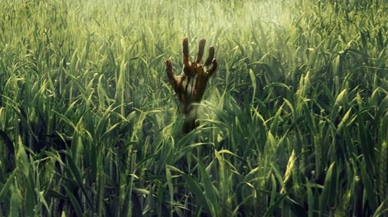 In the Tall Grass - parás traileren a Netflix Stephen King-adaptációja kép