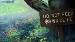 Nézd meg a legújabb Jurassic World rövidfilmet Colin Trevorrow rendezésében! kép